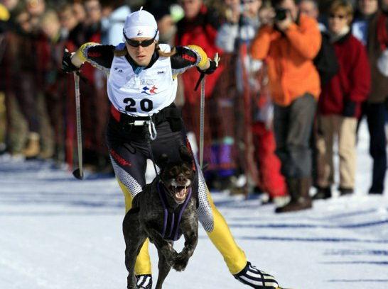 Ecole de Ski Joering Jura
