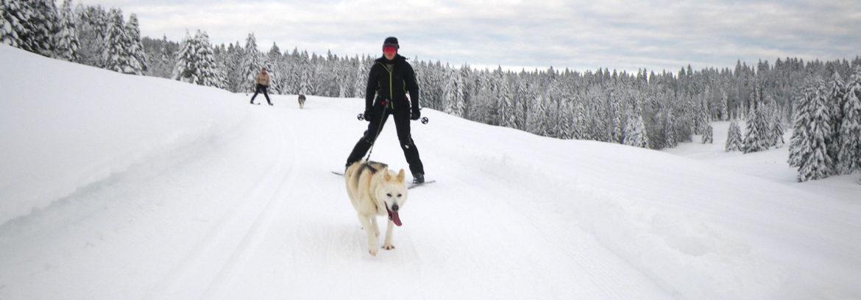 Ecole de ski Joering